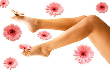 花と細い脚